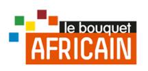 BQ AFRICAIN THEMA LOGO